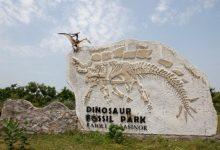 Photo of Dinosaur Park Gujarat भारत का पहला डायनासोर संग्रहालय